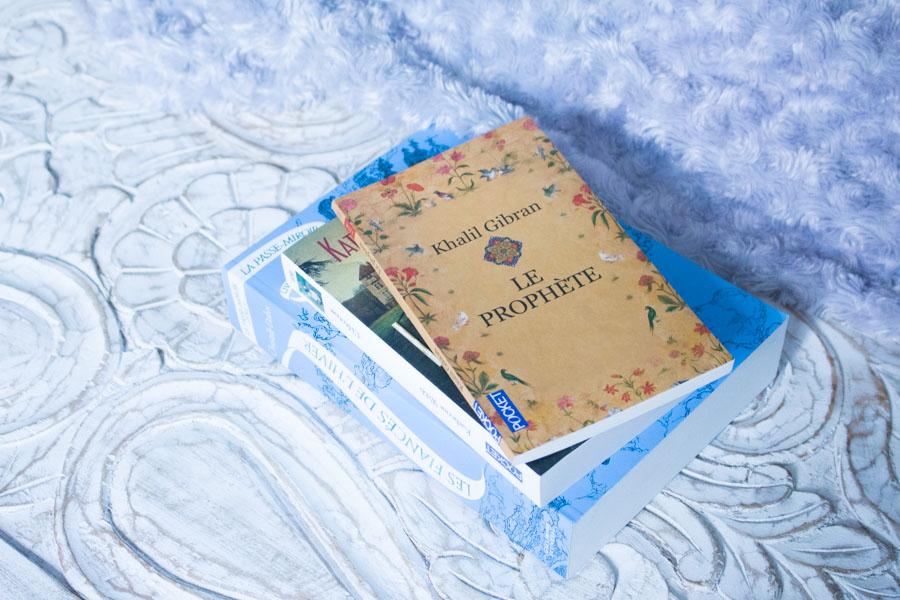 Mon avis sur les livres : Les Fiancés de L'Hiver de Christelle Dabos, L'Héritage de Katherine Webb et le Prophète de Khalil Gibran...